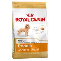 Thức ăn cho chó Royal Canin Poodle Adult - 500g, dành cho Poodle trên 10 tháng tuổi