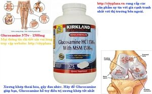 Thuốc bổ xương khớp Kirkland Signature Extra Strength Glucosamine HCI 1500mg With MSM 1500mg 375 viên
