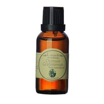 Tinh dầu Hương Nhu Trắng - Ocimun Gratissimum Pure Essential Oil