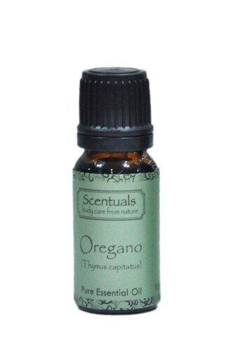 Tinh dầu rau thơm Scentuals Oregano Pure Essential Oil 10ml