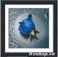 Tranh đính đá bông hoa hồng xanh - S8077