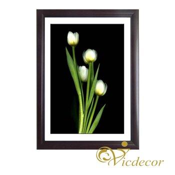 Tranh đơn sắc Tulip trắng Vicdecor TDS0028