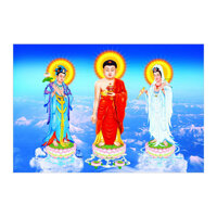 Tranh hình Phật Thế Giới Tranh Đẹp HPV97