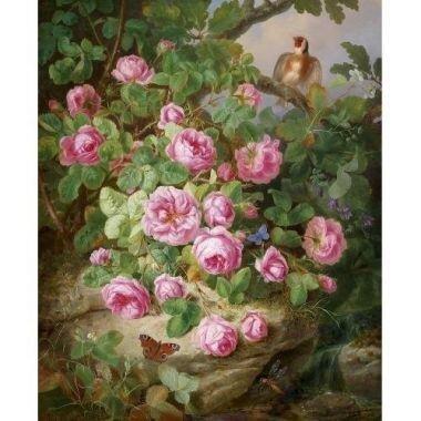 Tranh in canvas VTC LunaCV-0257 - hoa hồng, 50 x 60cm