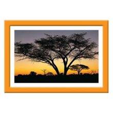 Tranh khung Thế giới tranh đẹp KW50-12