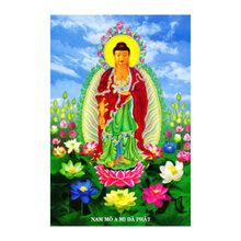 Tranh Phật A Di Đà Thế Giới Tranh Đẹp HP123