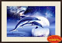 Tranh thêu chữ thập cá heo - DLH-YA742