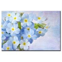 Tranh treo tường Suemall Những cánh hoa tím CV140822
