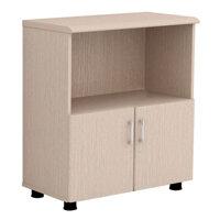 Tủ gỗ tài liệu Hòa Phát NT880SD