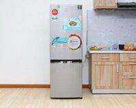 Tủ lạnh Electrolux EBB3200GG - 320 lít, 2 cửa