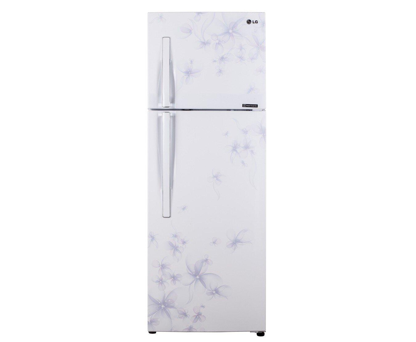 Tủ lạnh LG GNL275BF (GN-L275BF) - 255 lít , 2 cửa