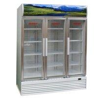 Tủ mát Sanaky VH-1520HPNK - 3 cửa
