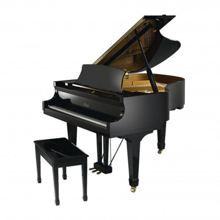 Đàn Piano Brandnew Essex EGP-161C