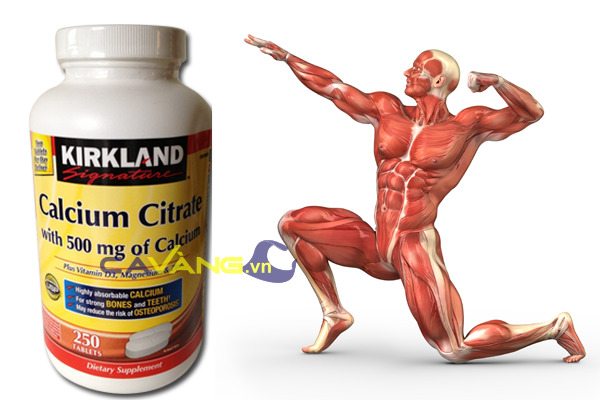 Viên uống bổ sung Canxi Kirkland Signature Calcium Citrate with 500mg of Calcium