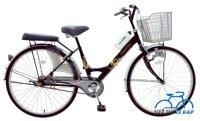 Xe đạp Asama C-2604