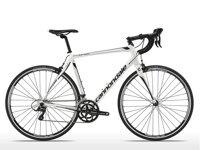 Xe đạp Cannondale Synapse Alloy 7 Sora 2015