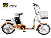 Xe đạp điện Aima ED310D