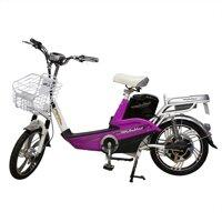 Xe đạp điện Anbico AP1503V1