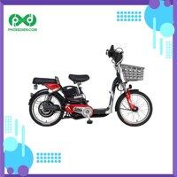 Xe đạp điện Asama EBK RY2001
