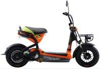 Xe đạp điện Giant Momentum M133 (M-133)