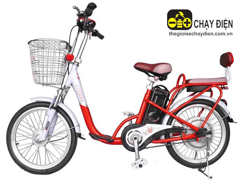 Xe đạp điện Gianya 029