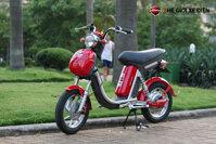 Xe đạp điện Nijia Dibao