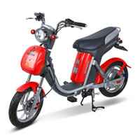 Xe đạp điện Nijia Maxbike 20A