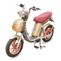 Xe đạp điện Nijia Plus 2016