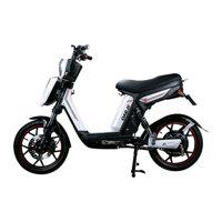 Xe đạp điện PEGA CAP-A3