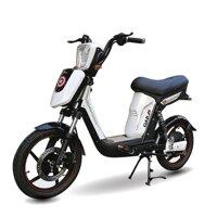 Xe đạp điện Pega Cap A9