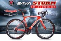Xe đạp đua SAVA Storm Campagnolo Centaur