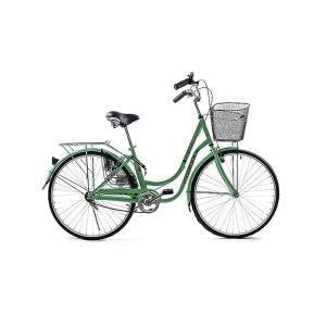 Xe đạp Fornix BH802