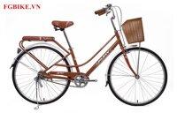Xe đạp Fury BH601
