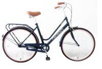 Xe đạp Giant 210
