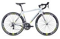Xe đạp Giant SCR 1 2017
