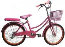 """Xe đạp mini Avibus 20"""""""