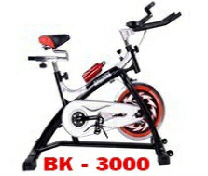 Xe đạp tập tại chỗ BK2000