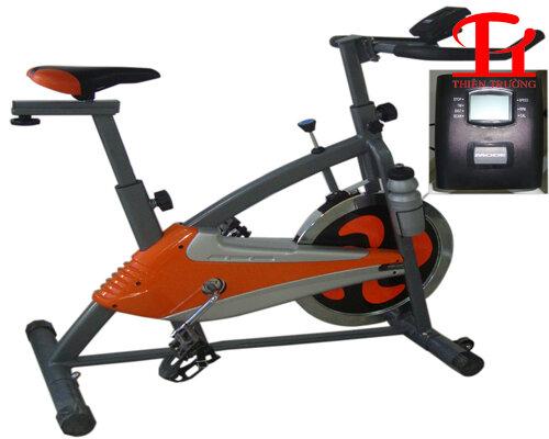 Xe đạp tập thể thao Động Lực P0608A