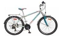 Xe đạp thể thao Asama AMT-31