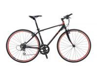 Xe đạp thể thao Giant FCR 3100 2016