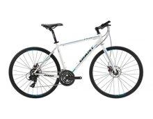 Xe đạp thể thao Giant FCR 3300
