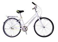 Xe đạp thể thao Giant Ineed 1500