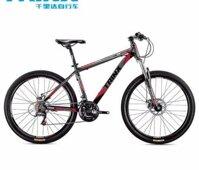 Xe đạp thể thao Trinx M116