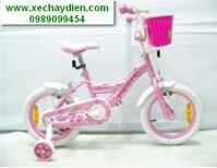 Xe đạp trẻ em 905 cỡ 12