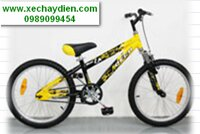 Xe đạp trẻ em AL-966-20B
