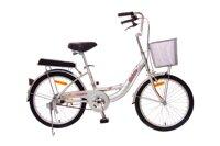 Xe đạp trẻ em Asama THL 20