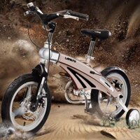Xe đạp trẻ em Lanq FD12