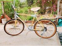 Xe đạp tre KT275