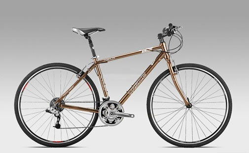 Xe đạp TRIACE M310