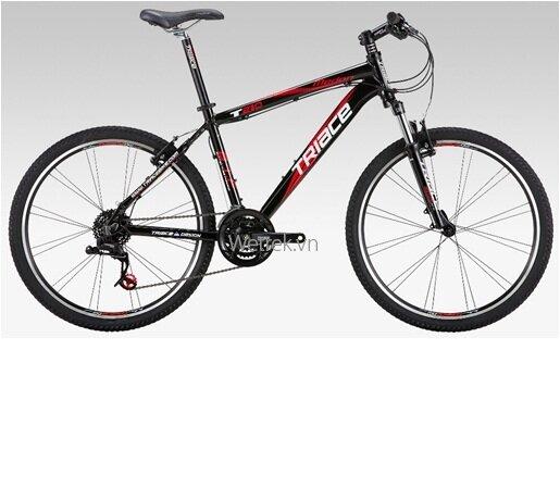 Xe đạp TRIACE T210